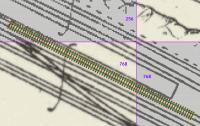 [map_smoothing8.png uploaded 25 Nov 2020]